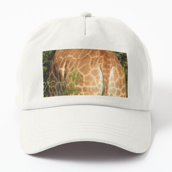 Giraffe at close range  Dad Hat