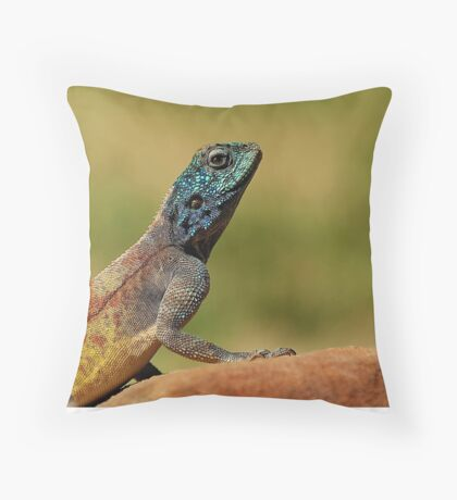 Enter.......the Dragon Throw Pillow