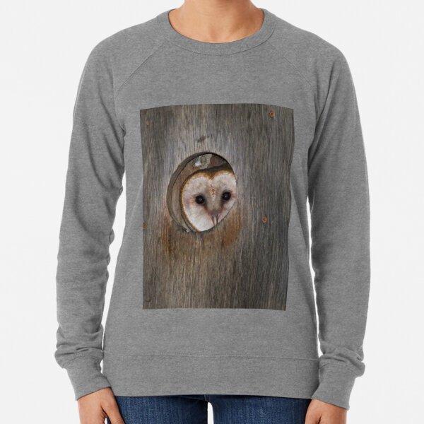 Mama Barn Owl Lightweight Sweatshirt