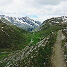 Umbrail Trail by heinrich