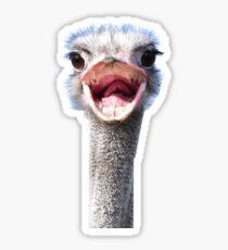 Goofy ostrich Sticker
