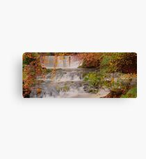 Stockghyll Force Canvas Print