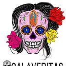 Mexican Calaveritas - Skulls by borderbandit