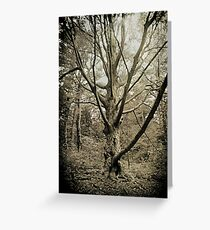 Deep in the Magical Forest Greeting Card