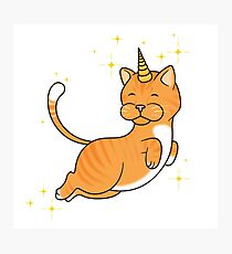 Orange Tabby Unicat Photographic Print
