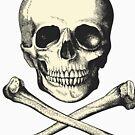 Vintage Skull and Crossbones. So scary! by cartoon