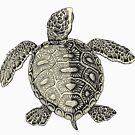 Turtle Vintage Drawing by cartoon