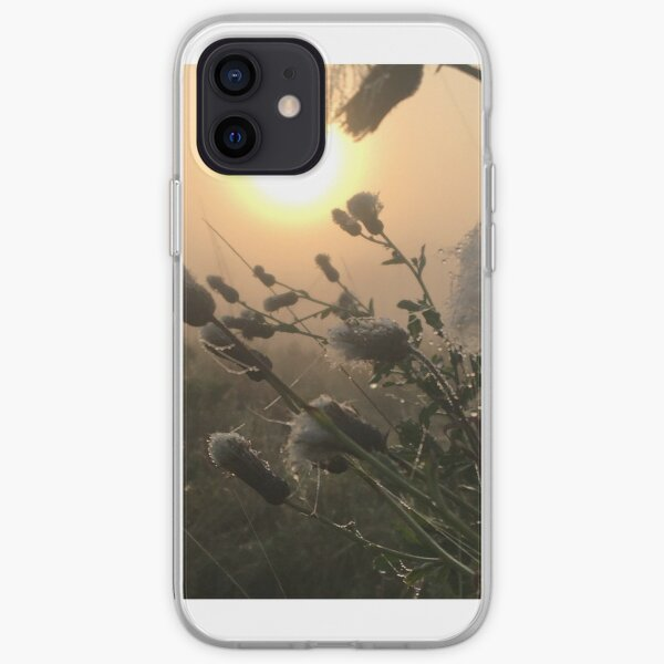 Thistle with frost at sunrise iPhone Soft Case