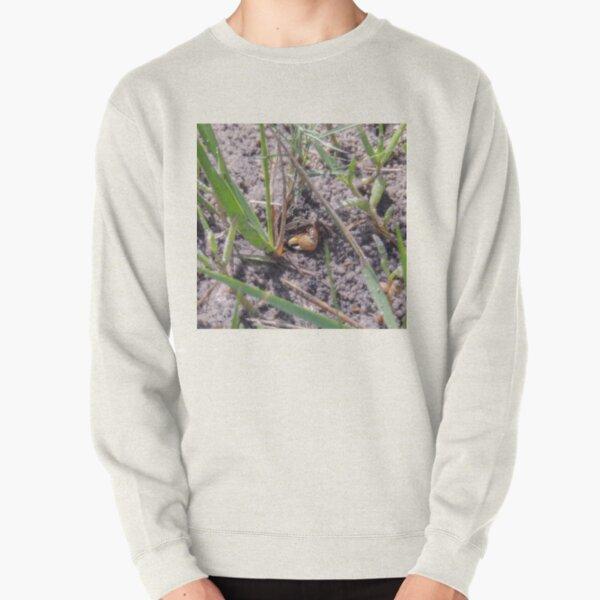Little Crab Says Hello Pullover Sweatshirt