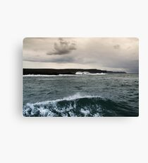Cliffs of Moher from Doolin Harbour Cruise Canvas Print