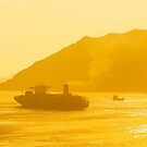 Cargo ship under sunset by kawing921