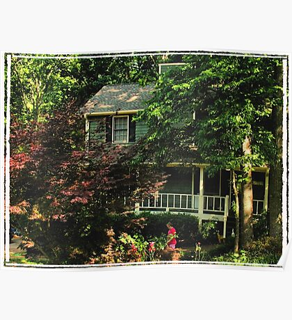 """""""Southern Comfort""""... prints and products Poster"""