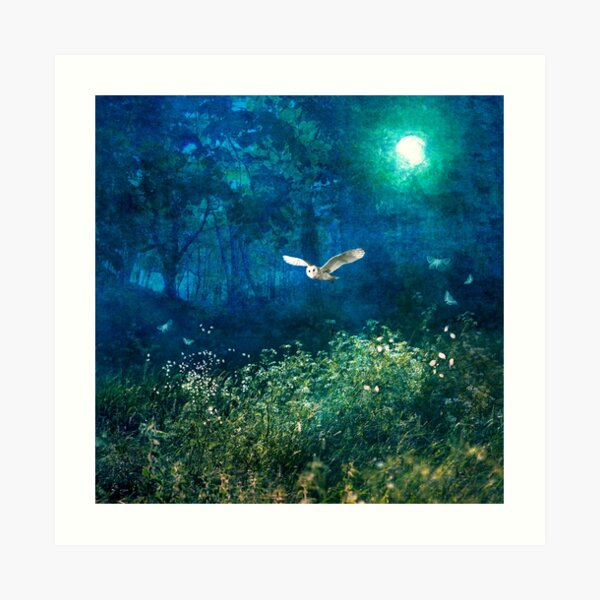 Midsummer Moonlight  Art Print