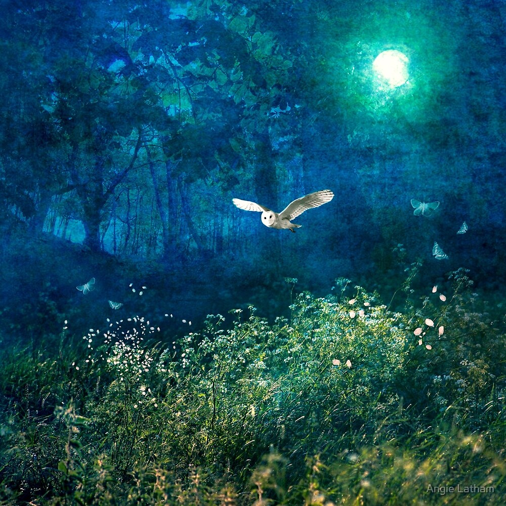 Midsummer Moonlight  by Angie Latham
