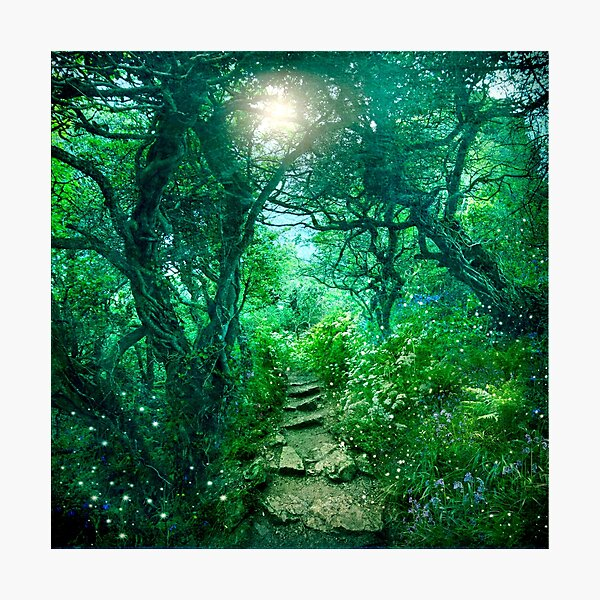 The Secret Path (redone 2016) Photographic Print