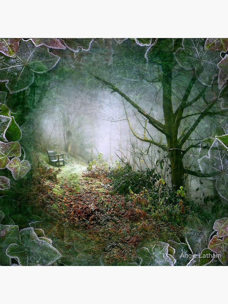A Winter's Walk (square crop) by AngelaBarnett