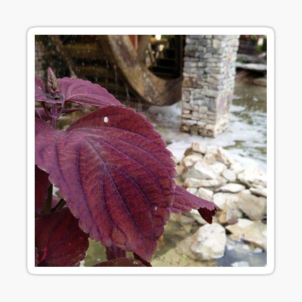 Purple Flower By Water Wheel Sticker