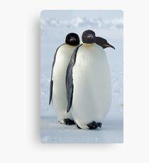 Emperor Penguins Huddled Metal Print