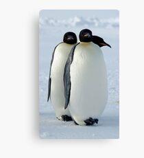 Emperor Penguins Huddled Canvas Print