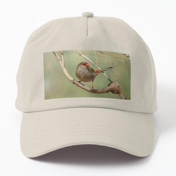 Red-browed Finch Dad Hat