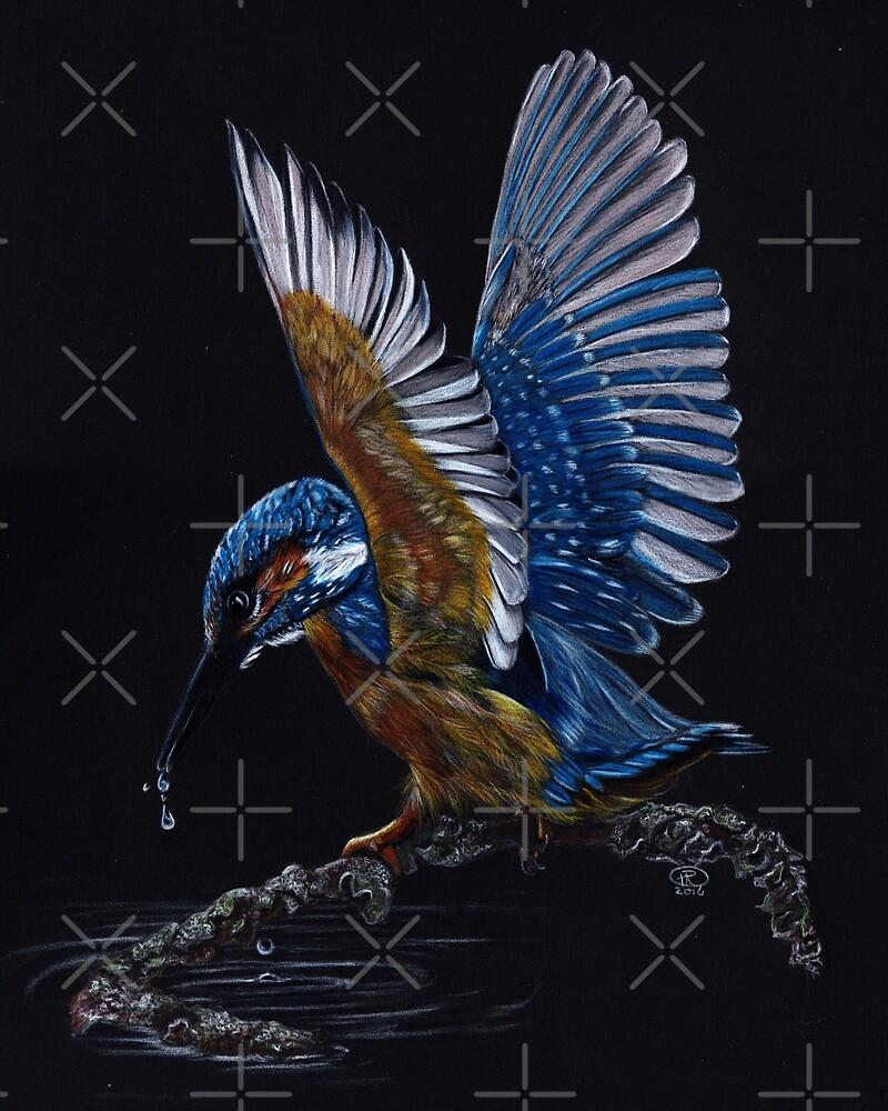 Kingfisher Drawing by TRichardsonArt
