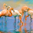 Caribbean Flamingos by Brian Tarr