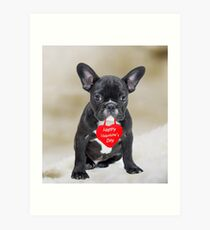 French Bulldog Happy Valentine's Day Art Print