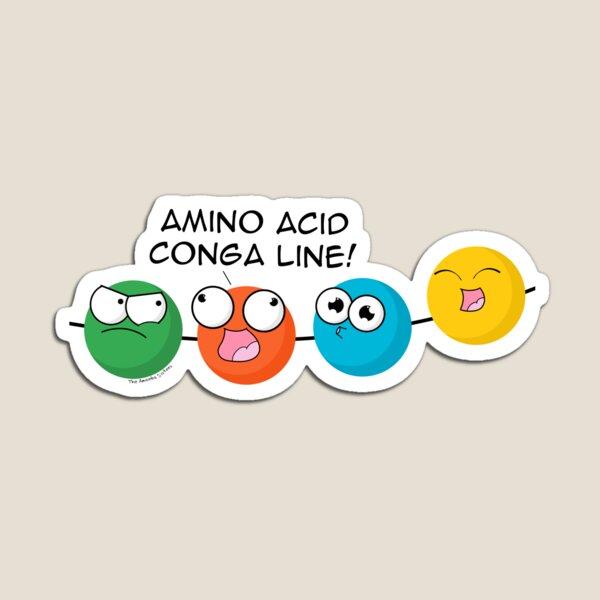Amino Acid Conga Line Magnet