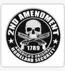 2nd Amendment Skull Sticker
