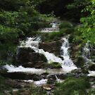 Waterfalls of Virginia by virginian