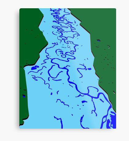 Flood Plain Metal Print