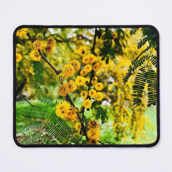 Spring Branch  Mouse Pad