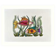 Go Fish!/2 Art Print