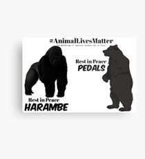 Harambe & Pedals Metal Print