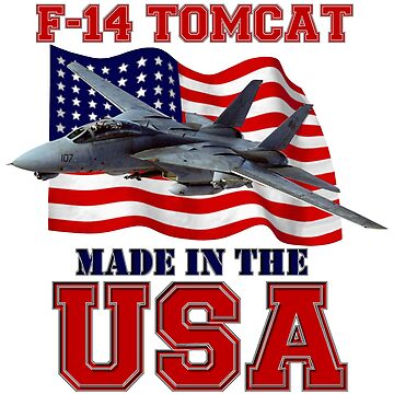 F-14 Tomcat Made in the USA by BasilBarfly