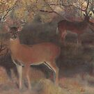Whitetail At Dusk by dbclemons