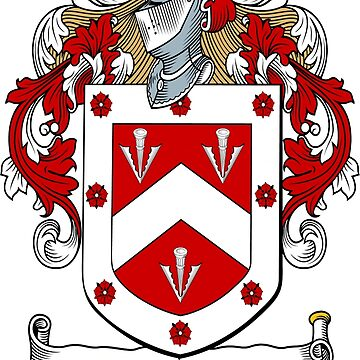 Foley (Dublin) by HaroldHeraldry