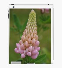 Lupin iPad Case/Skin