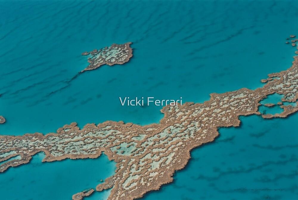 Great Barrier Reef North Queensland © Vicki Ferrari by Vicki Ferrari