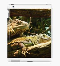 Sorry dude; I met you at the wrong time iPad Case/Skin