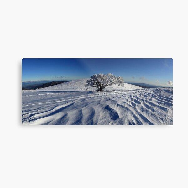 Endurance.  Mt Stirling  Metal Print