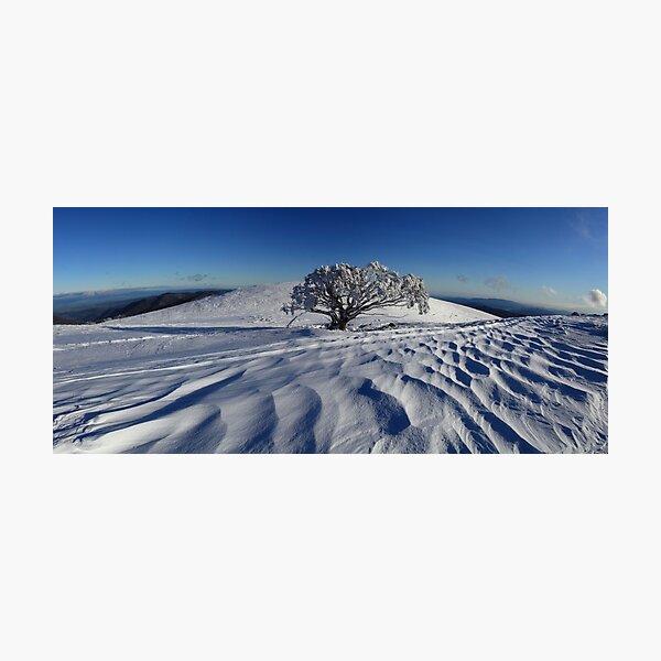 Endurance.  Mt Stirling  Photographic Print