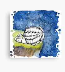 Starry Night - art from Karambola Canvas Print