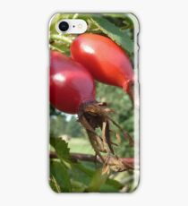 Autumn Rose Hips iPhone Case/Skin