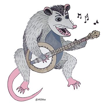 Possum playing a banjo by PeggyCline