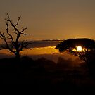 Sunset Over The Kruger by Clive S