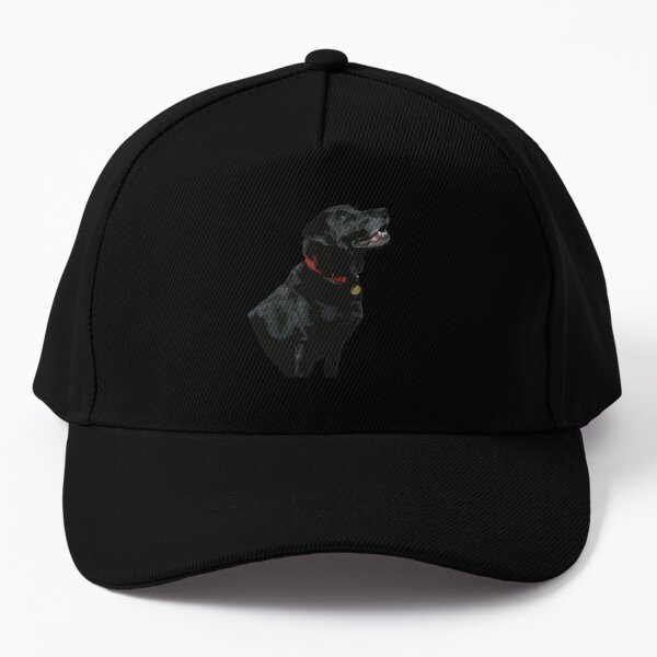 Adoration from a Black Labrador dog Baseball Cap