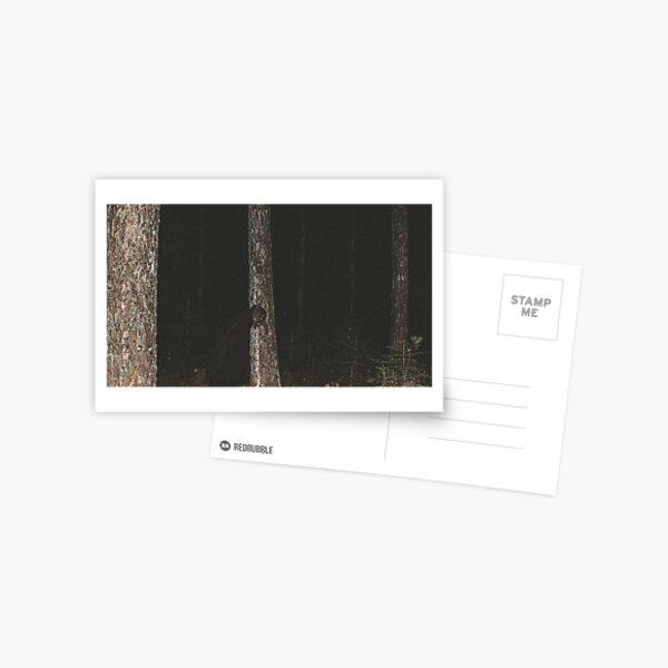 Forest Troll Postcard