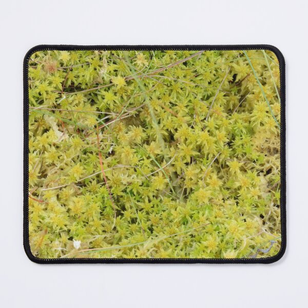 A Bed of Sphagnum Moss Mouse Pad