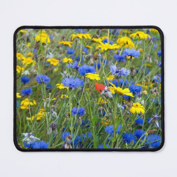 Blue Cornflowers and Yellow Daisies Mouse Pad